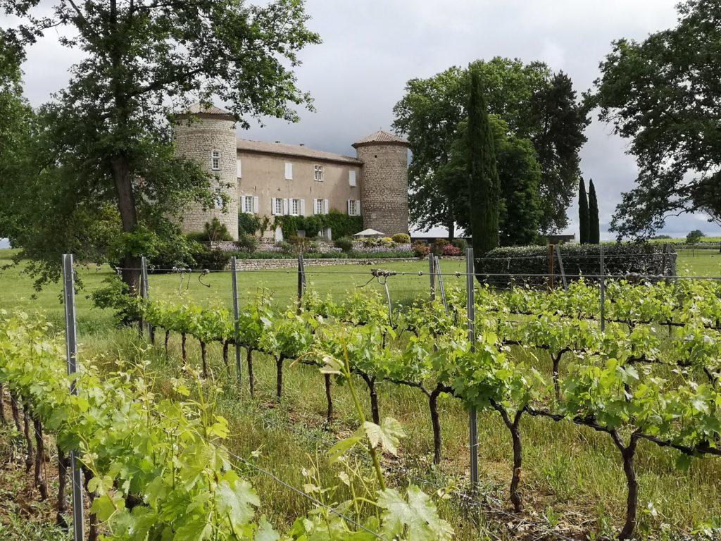 Le Château de la Selve et son terroir